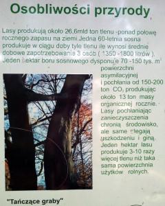 20130811_104340-001